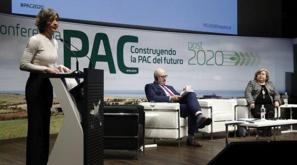 Requisitos para solicitar ayuda en el PAC España