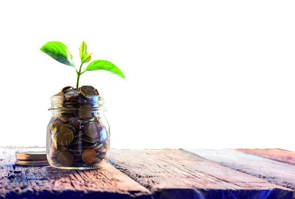 Conoce los Requisitos para cobrar la Renta Agraria – SEPE
