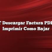 EDET Descargar Factura PDF: Ver    Imprimir Como Bajar